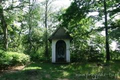 Kaplica w Dołędze