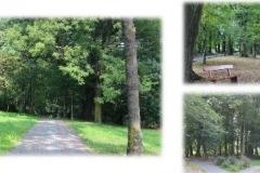 Park-Podworski-z-okolo-1730-roku-okolo-1845-roku